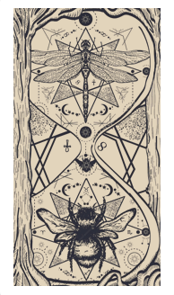 Ace of Pentacles_photo_1